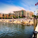 Planned venue for DRAGON BOAT is the National Harbor just south of Washington, D.C. on the Maryland side of the infamous Potomac River.