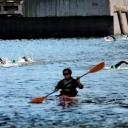 2013 WPFG - Triathlon - Belfast Northern Ireland (403)