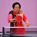 2013 WPFG - Table Tennis - Belfast Northern Ireland (130)