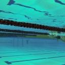 2013 WPFG - Swimming - Indoor - Belfast Northern Ireland (6)