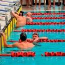 2013 WPFG - Swimming - Indoor - Belfast Northern Ireland (39)