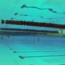 2013 WPFG - Swimming - Indoor - Belfast Northern Ireland (7)