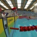 2013 WPFG - Swimming - Indoor - Belfast Northern Ireland (3)