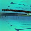 2013 WPFG - Swimming - Indoor - Belfast Northern Ireland (8)