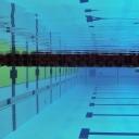 2013 WPFG - Swimming - Indoor - Belfast Northern Ireland (9)