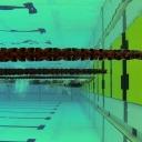 2013 WPFG - Swimming - Indoor - Belfast Northern Ireland (2)