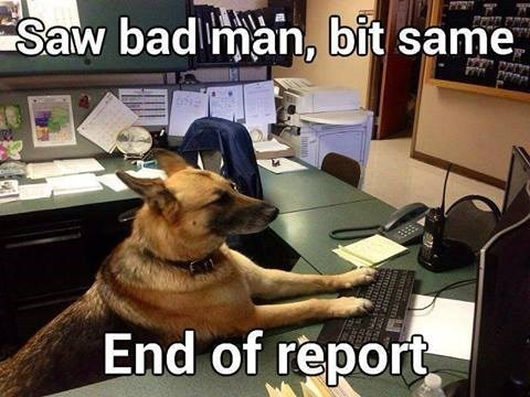 The rules for Police Service Dogs are still uploading so be patient and they should be done by today.