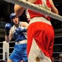 2013 WPFG Boxing in Belfast Northern Ireland (140)