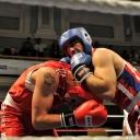2013 WPFG Boxing in Belfast Northern Ireland (72)