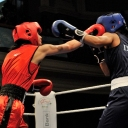2013 WPFG Boxing in Belfast Northern Ireland (550)