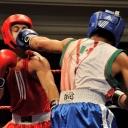 2013 WPFG Boxing in Belfast Northern Ireland (492)